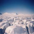 Arktis. Bild: Morguefile